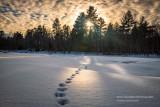 Light, shadows and tracks