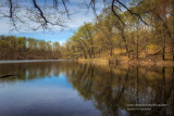 Spring scene and reflections