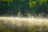 Morning Fog rising