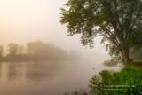Foggy morning at the Chippewa river 1
