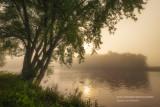 Foggy morning at the Chippewa river 2