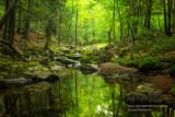 Magical creek, Blue Hills