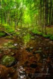 Magical creek, Blue Hills 2