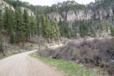 Road into Roughlock Falls