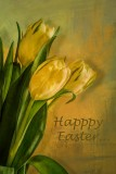 Happy Easter to all my PBase friends....sorry I am late but have had guests over the weekend... Still freezing cold here but happy that we haven't had  any more snow... Thank you all for your visits and kind words...