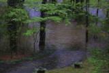 Flooded driveway, via Van Gogh :)