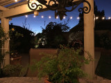 Chillin' on the Patio