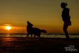 Hondenfotografie-2017030.jpg