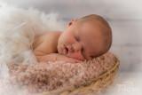 Newborn-2017013.jpg