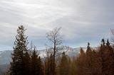TREKKING IN KARKONOSZE MOUNTAINS