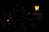 Dark Night Lantern