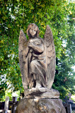 Angel Under Linden Tree