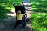Driving The Stroller