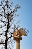 An Eagle On The Column