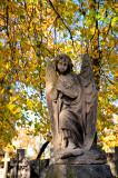 Angel Under Golden Leaves