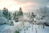Snowed backyard G-400