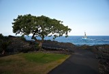 Sea of Hawaii M8