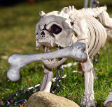 Dog with Bone_3400.jpg