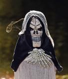Skull_3360.jpg