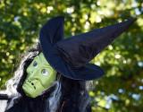 Witch_3395.jpg