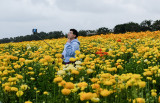 Flower Field Photo Ops 4