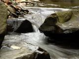 Tracy Creek