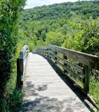 Suny Binghamton Wildlife Preserve NEW03466_dphdr.jpg