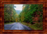 Fall Foliage in NY & Pennsylvania