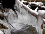 Jones Park Dsc00430 (Water).jpg