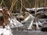 Jones Park Dsc00445 (Water).jpg