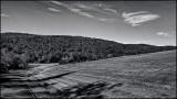 DSC00148 (Landscapes) B&W.jpg