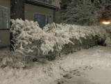 oh_snow