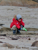 Child Playing on a Rockport Beach in February