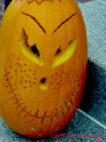 Strafford Pumpkin