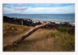Coastal Bliss...