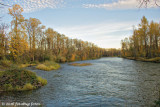 Willamette River at Clearwater Park