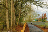 Along Mill Race Path
