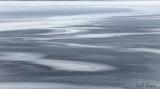 Ice patterns-3.jpg