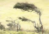 Bleak Tree3.jpg