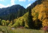 Autumn in the Black Hills - South Dakota