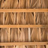 Palapa roof detail