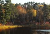 Myrtle Lake scene copy.jpg