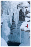 Athabasca Falls in winter.jpg