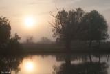 Ambiance matinale sur le Danube