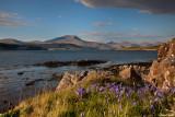 Scotland / Écosse 2013