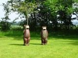 Bears at Whitbarrow Village