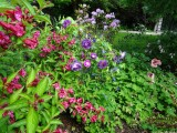 Lovely garden at nearby village of Greystoke