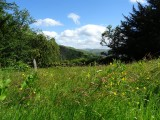 View from Matterdale Church