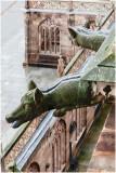 Gargouilles-Cathédrale de Strasbourg (F-Alsace)