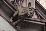 Gargouille cathédrale de Strasbourg